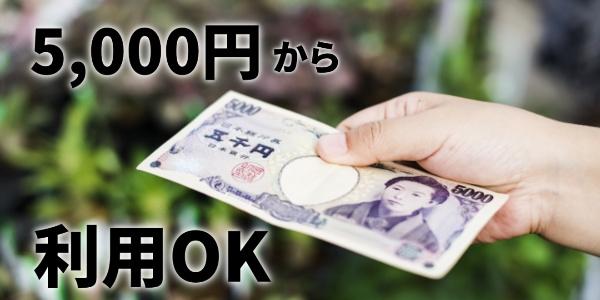 5000円から利用可能